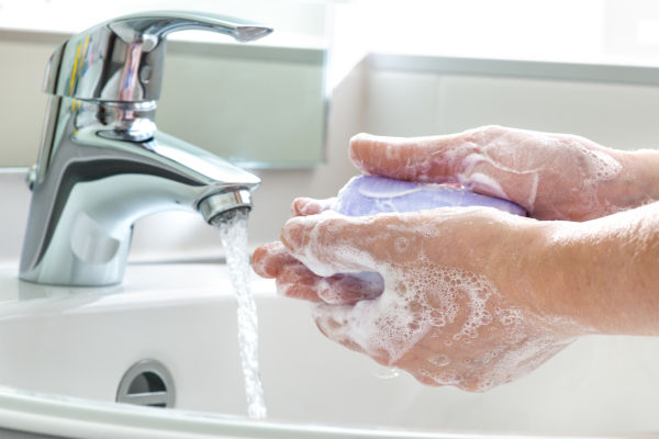 Washing hands for House Gecko